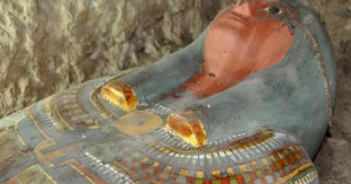 archaeologists-discover-mummy-in-egyptian-tomb-news24hours-in