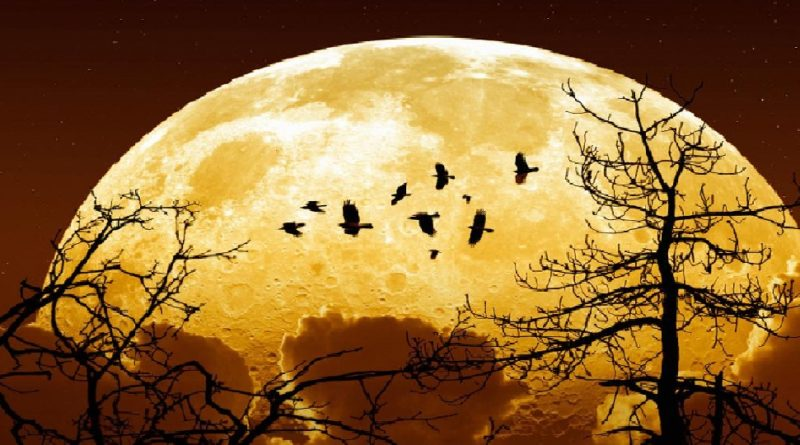 super-moon-news24hours-in